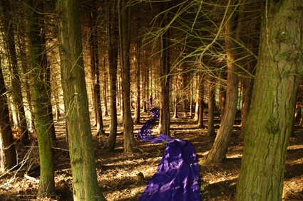 Purple Green 3, 2008