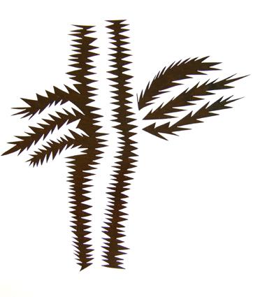 Cactus, 2006