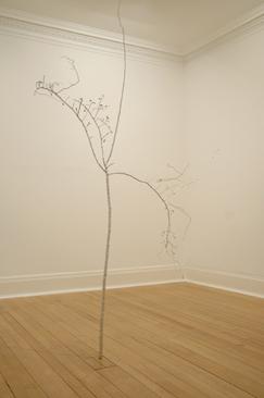 The Needle Tears a Hole, 2004