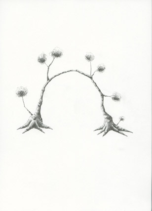 Árvore 10, 2005