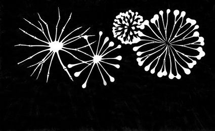 Fireworks' Bones 2, 2007