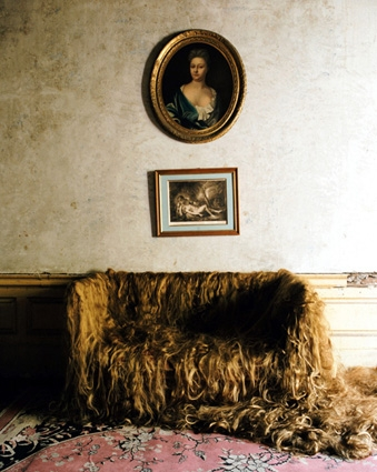 The Sofa (11, Henrietta Street, Dublin), 2007