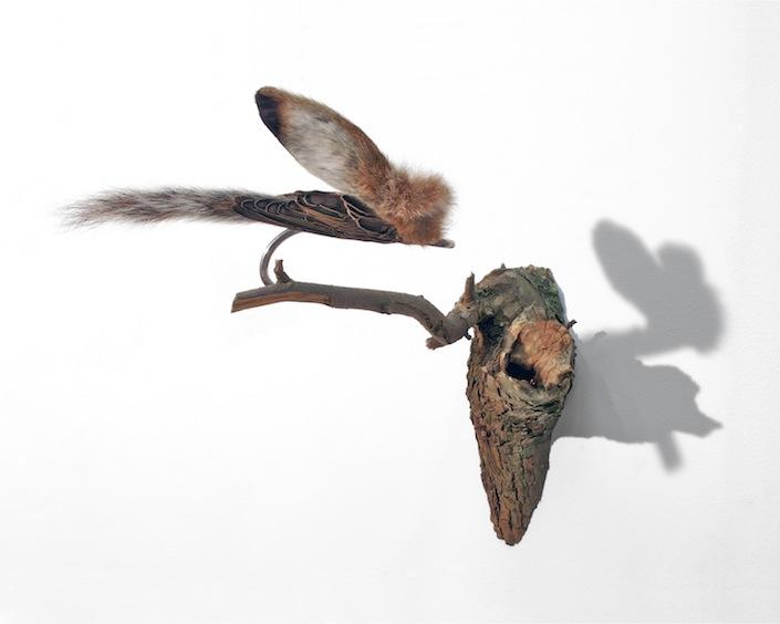 Fly, 2007