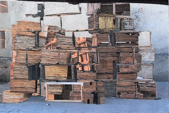 Cegueira, 2008
