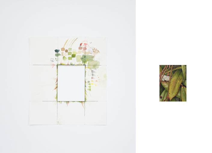 Uma joaninha e seu processo III, 2016