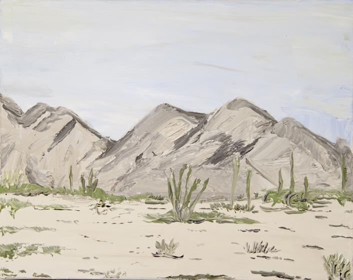 Escapada al Sur (Sonora) XI, 2015