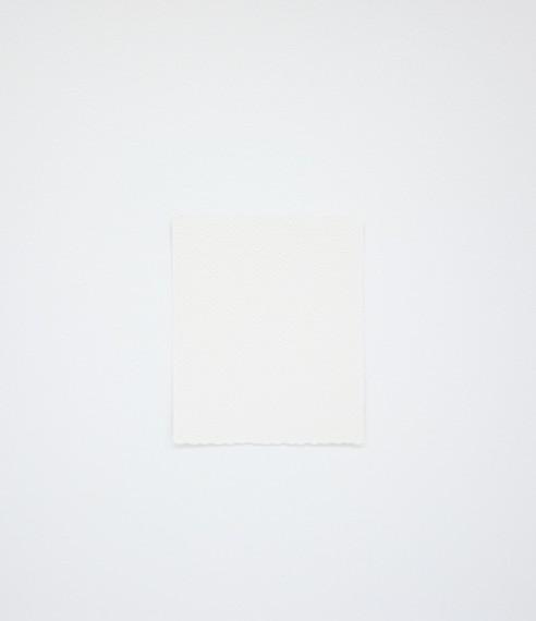 Autorretrato como papel higiênico (ainda limpo), 2016