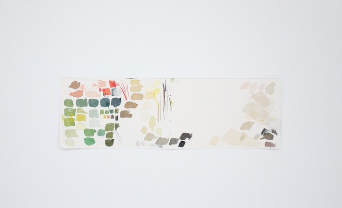 Autorretrato como teste de cores (moleskine), 2016