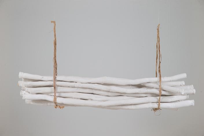 Cana coluna, 2019